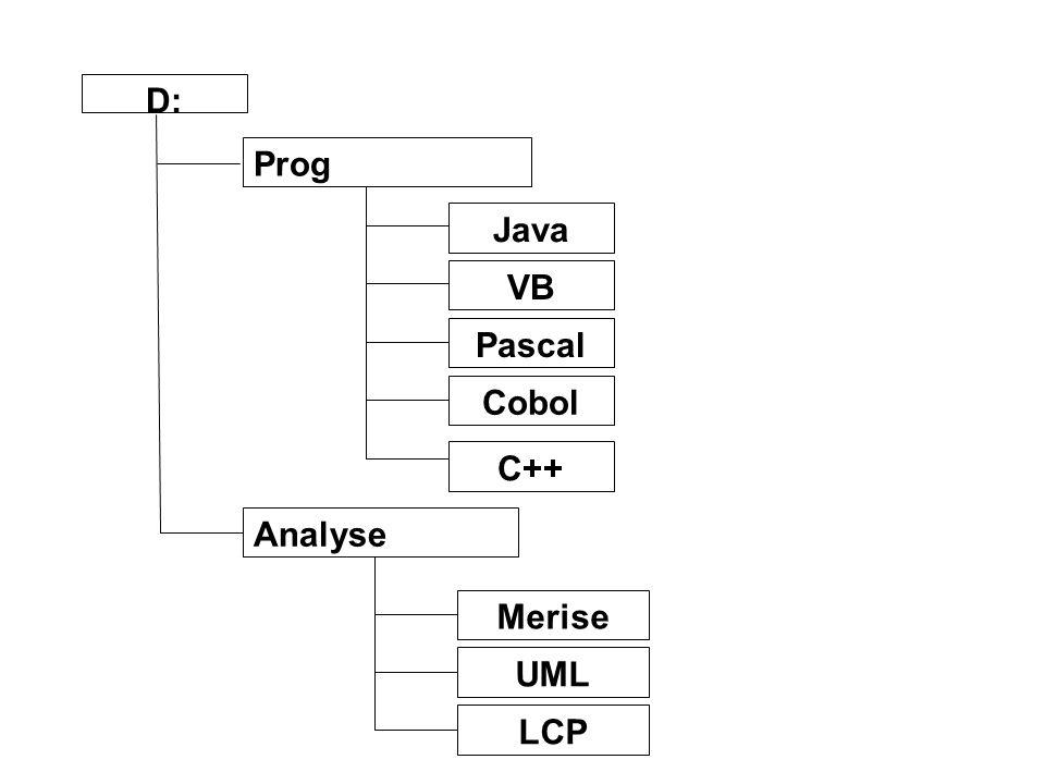 D: Prog Java VB Pascal Cobol C++ Analyse Merise UML LCP