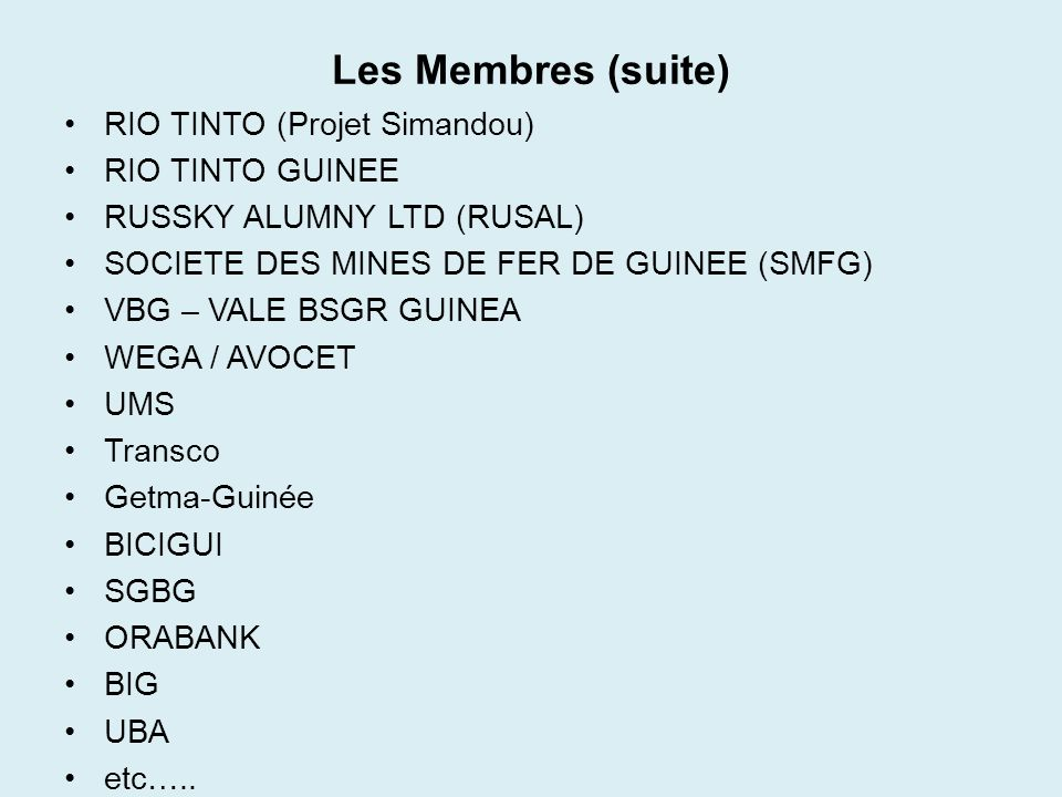 Les Membres (suite) RIO TINTO (Projet Simandou) RIO TINTO GUINEE