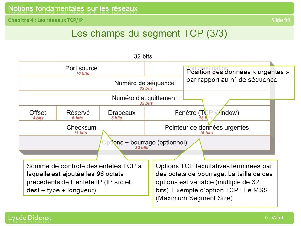 Les champs du segment TCP (3/3)
