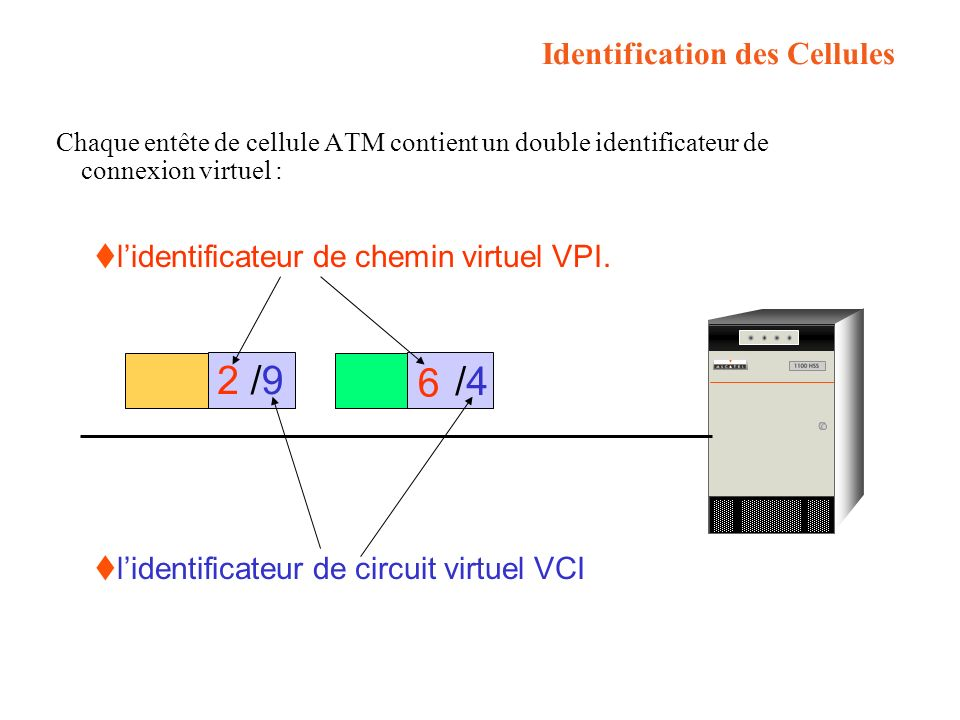 Identification des Cellules