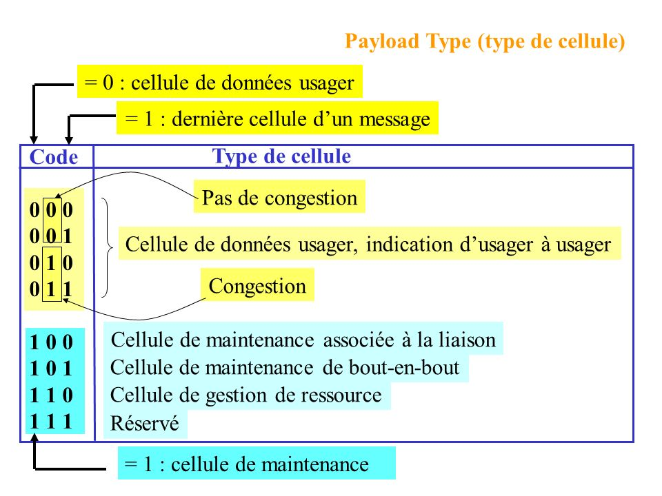 Payload Type (type de cellule)