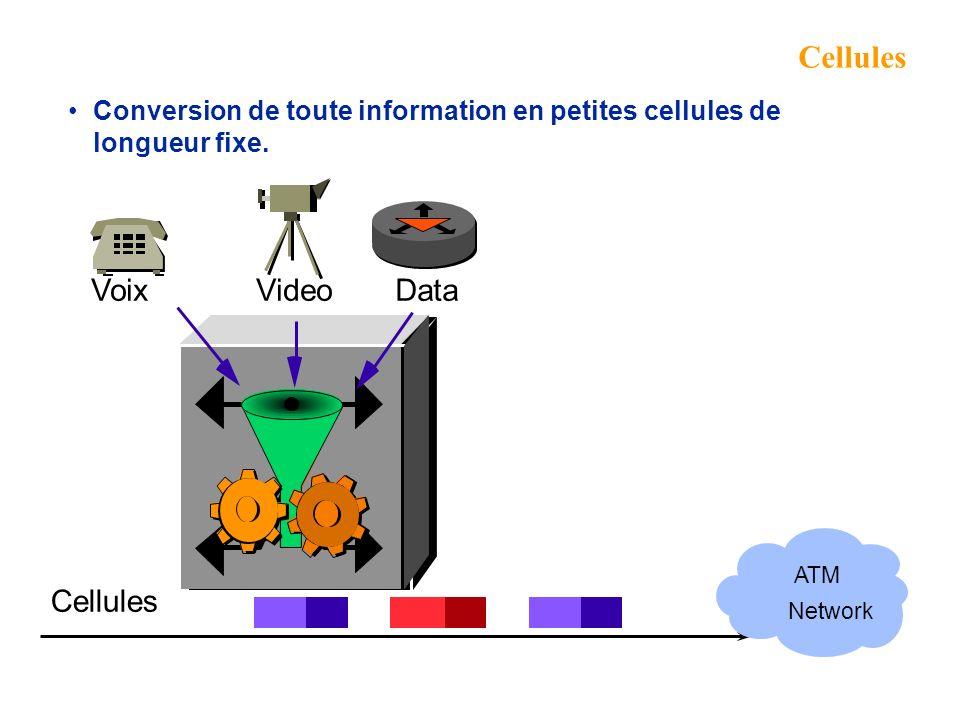 Cellules Voix Video Data Cellules