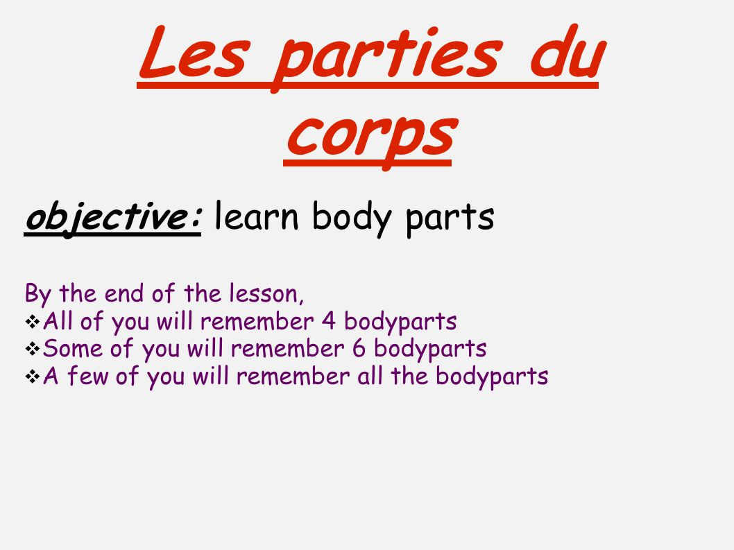 Les parties du corps objective: learn body parts