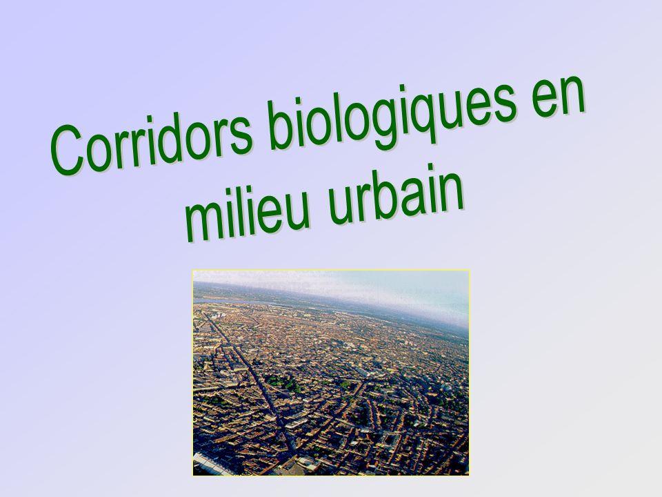 Corridors biologiques en