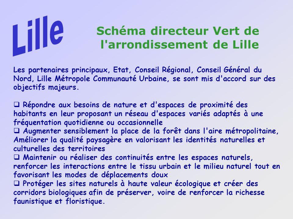 Lille Schéma directeur Vert de l arrondissement de Lille
