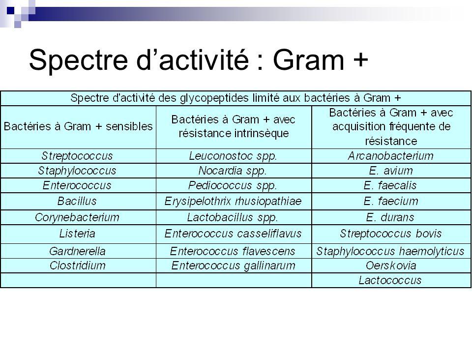 Spectre d'activité : Gram +