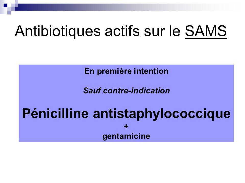 Antibiotiques actifs sur le SAMS