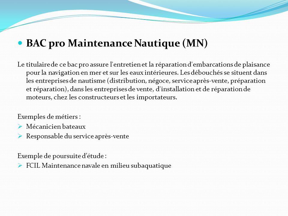 BAC pro Maintenance Nautique (MN)