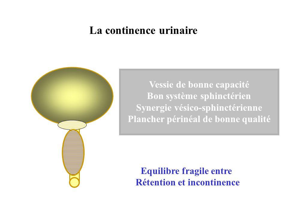 La continence urinaire