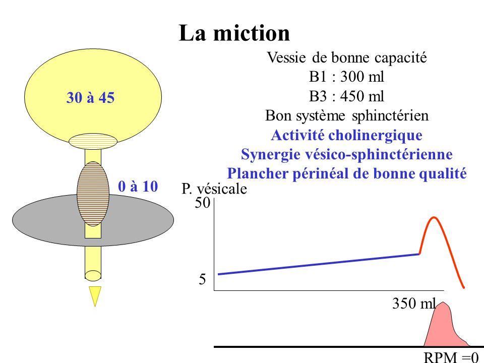 Synergie vésico-sphinctérienne Plancher périnéal de bonne qualité