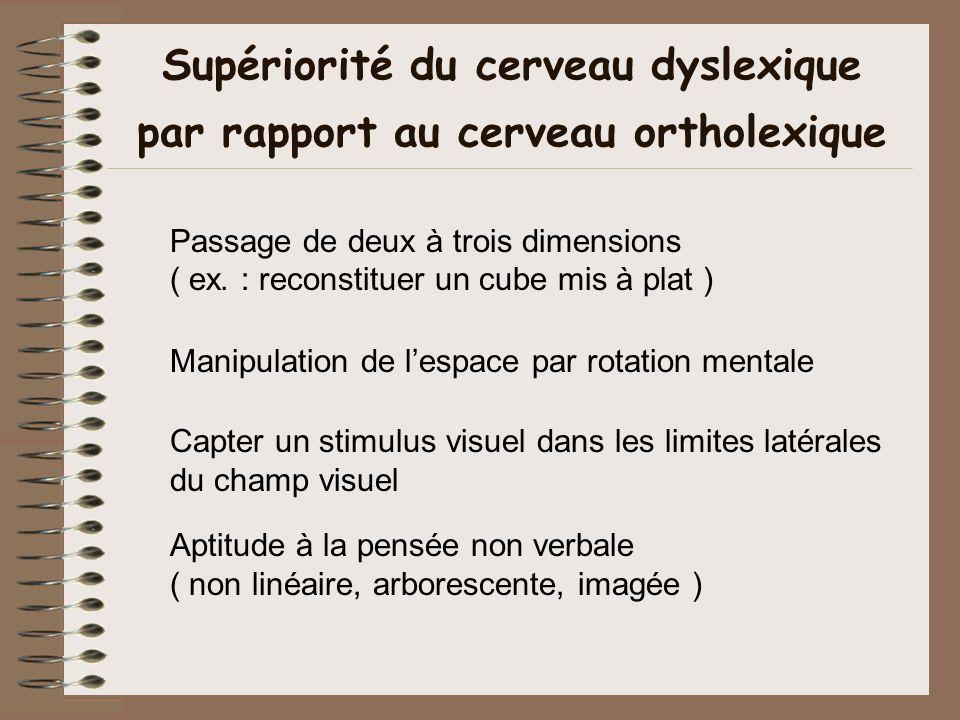 Supériorité du cerveau dyslexique par rapport au cerveau ortholexique