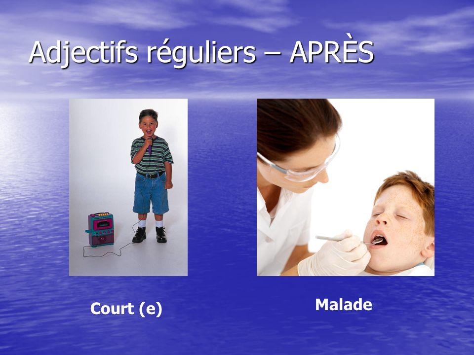 Adjectifs réguliers – APRÈS