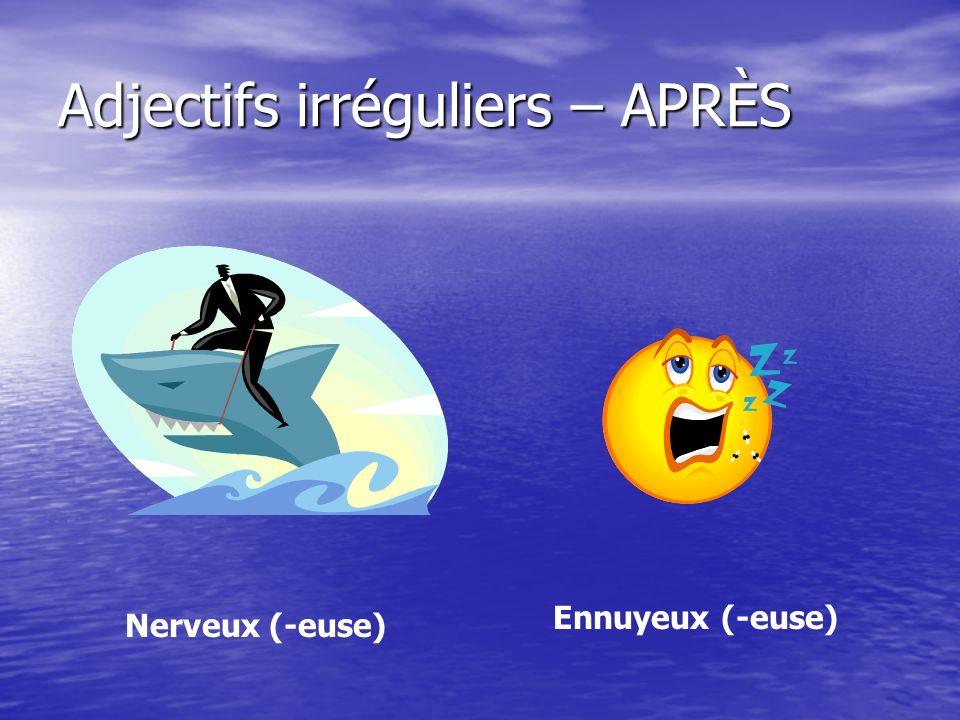 Adjectifs irréguliers – APRÈS