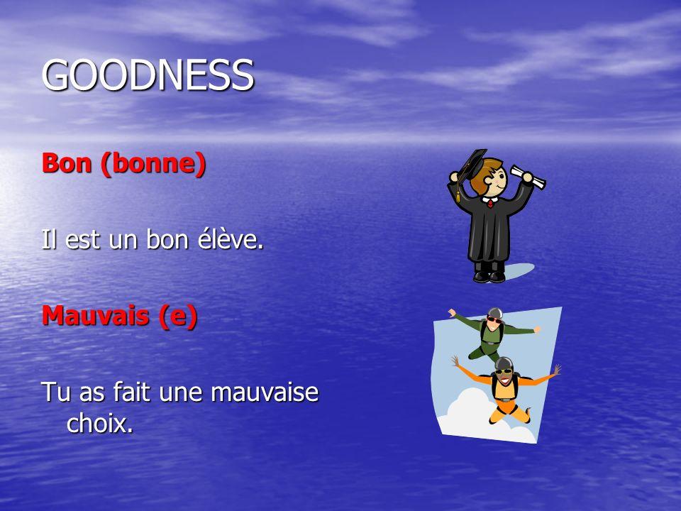 GOODNESS Bon (bonne) Il est un bon élève. Mauvais (e)