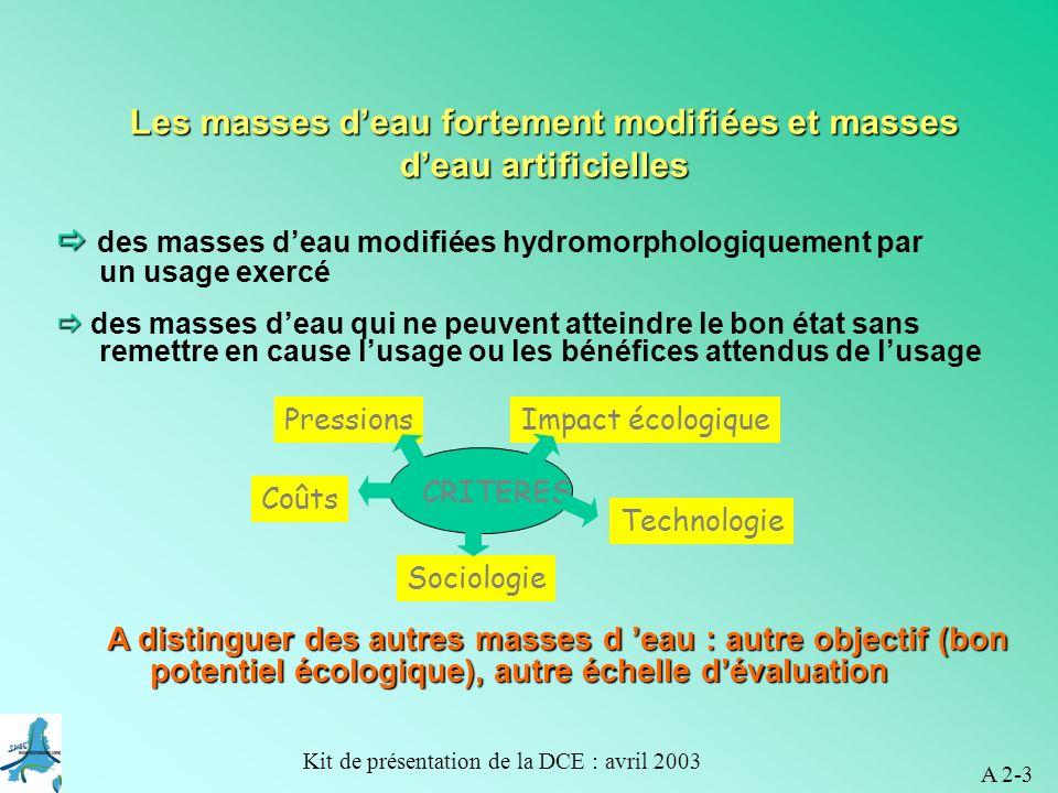 Les masses d'eau fortement modifiées et masses d'eau artificielles