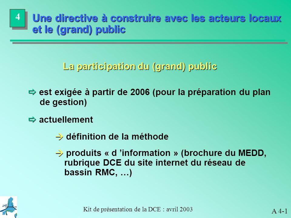 La participation du (grand) public