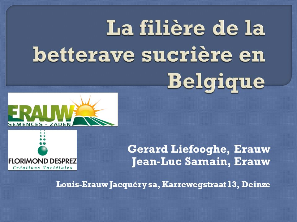 La filière de la betterave sucrière en Belgique