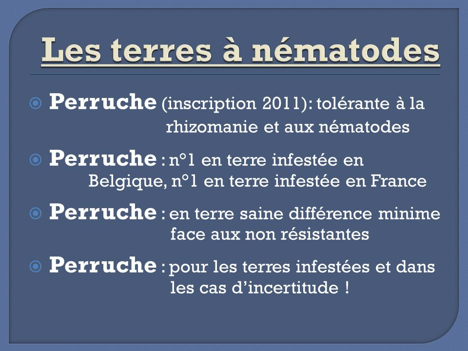 Les terres à nématodes Perruche (inscription 2011): tolérante à la rhizomanie et aux nématodes.