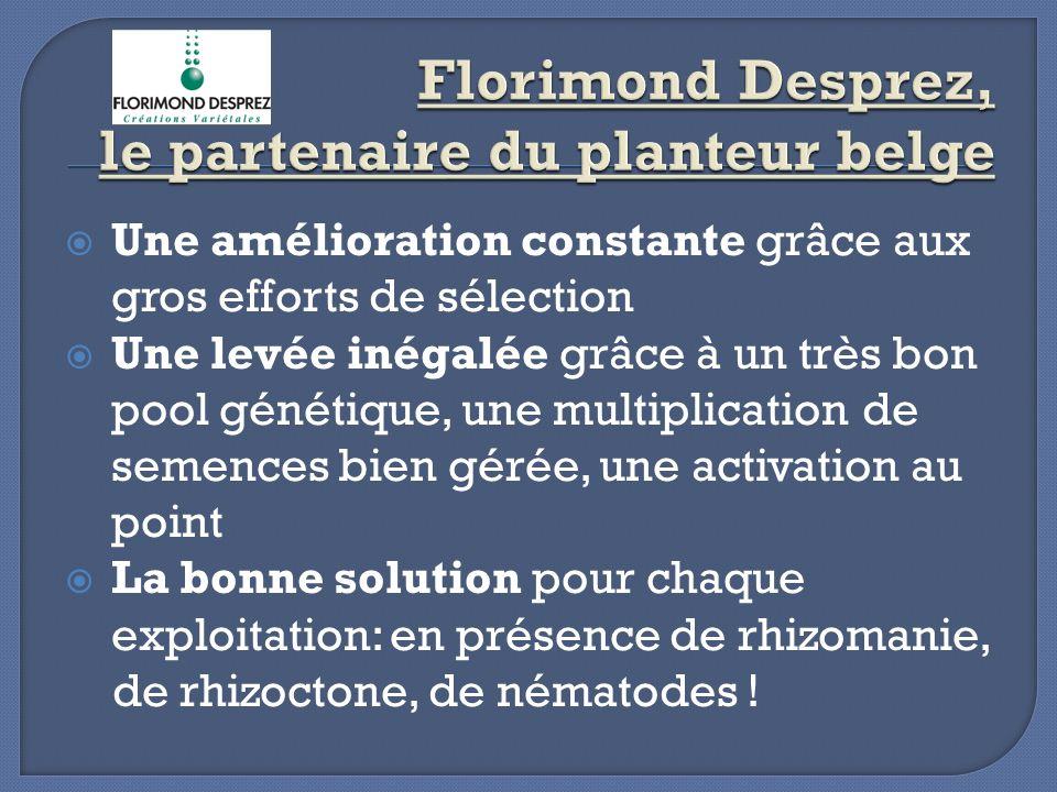 Florimond Desprez, le partenaire du planteur belge
