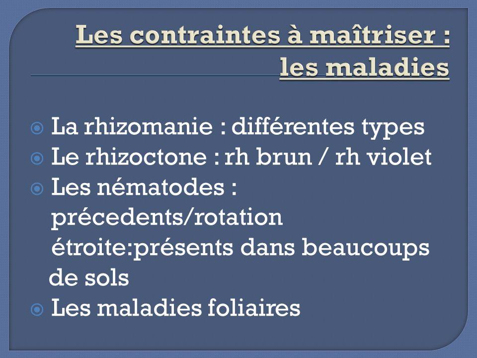 Les contraintes à maîtriser : les maladies