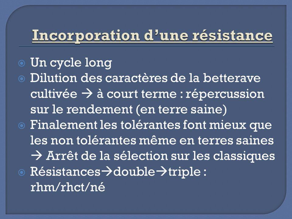 Incorporation d'une résistance