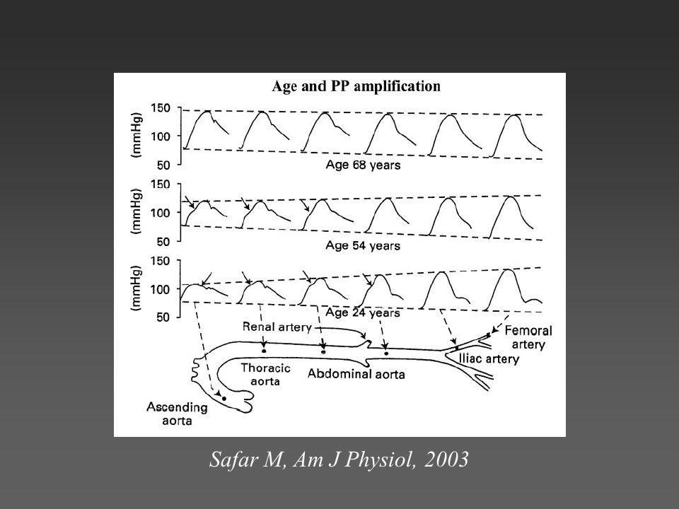 Safar M, Am J Physiol, 2003