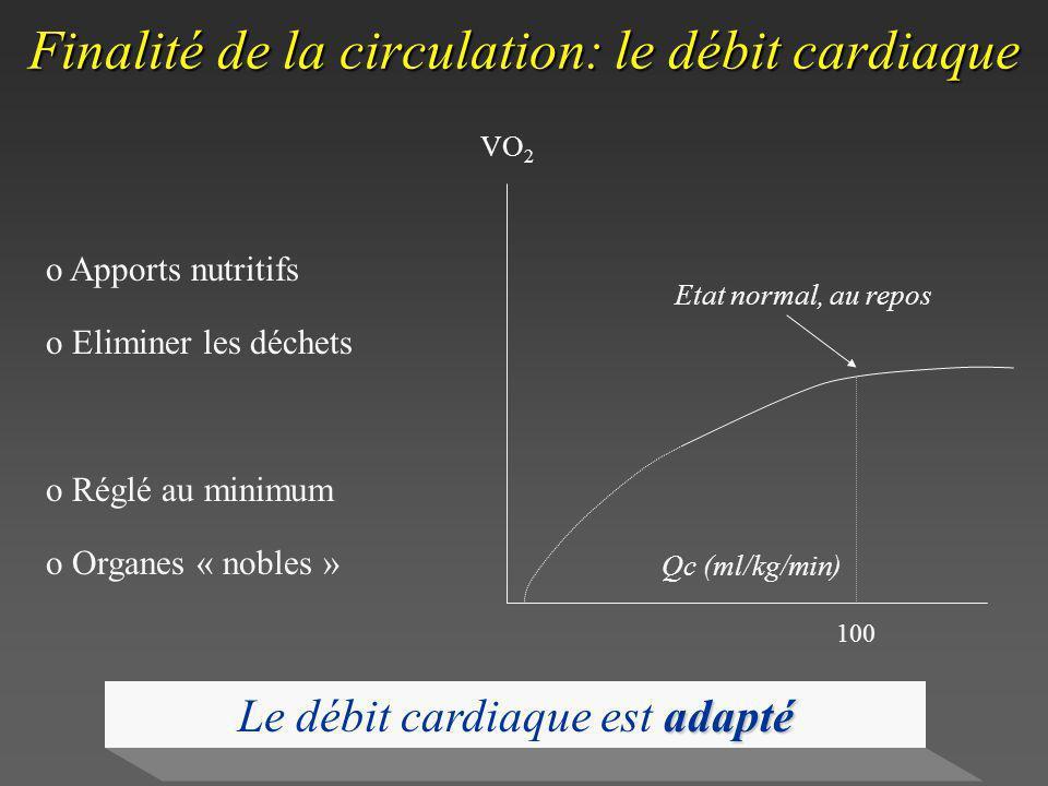 Finalité de la circulation: le débit cardiaque