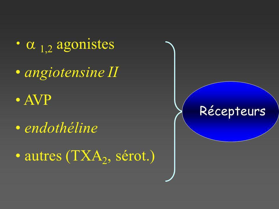 a 1,2 agonistes angiotensine II AVP endothéline autres (TXA2, sérot.)