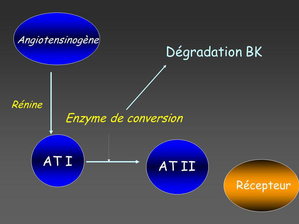 Dégradation BK AT I AT II Enzyme de conversion Récepteur