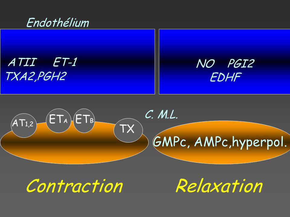 Contraction Relaxation ATII ET-1 TXA2,PGH2 GMPc, AMPc,hyperpol.