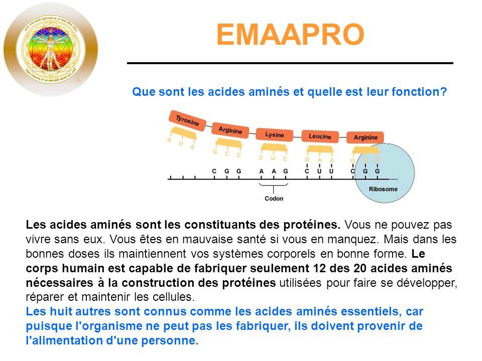 EMAAPRO Que sont les acides aminés et quelle est leur fonction