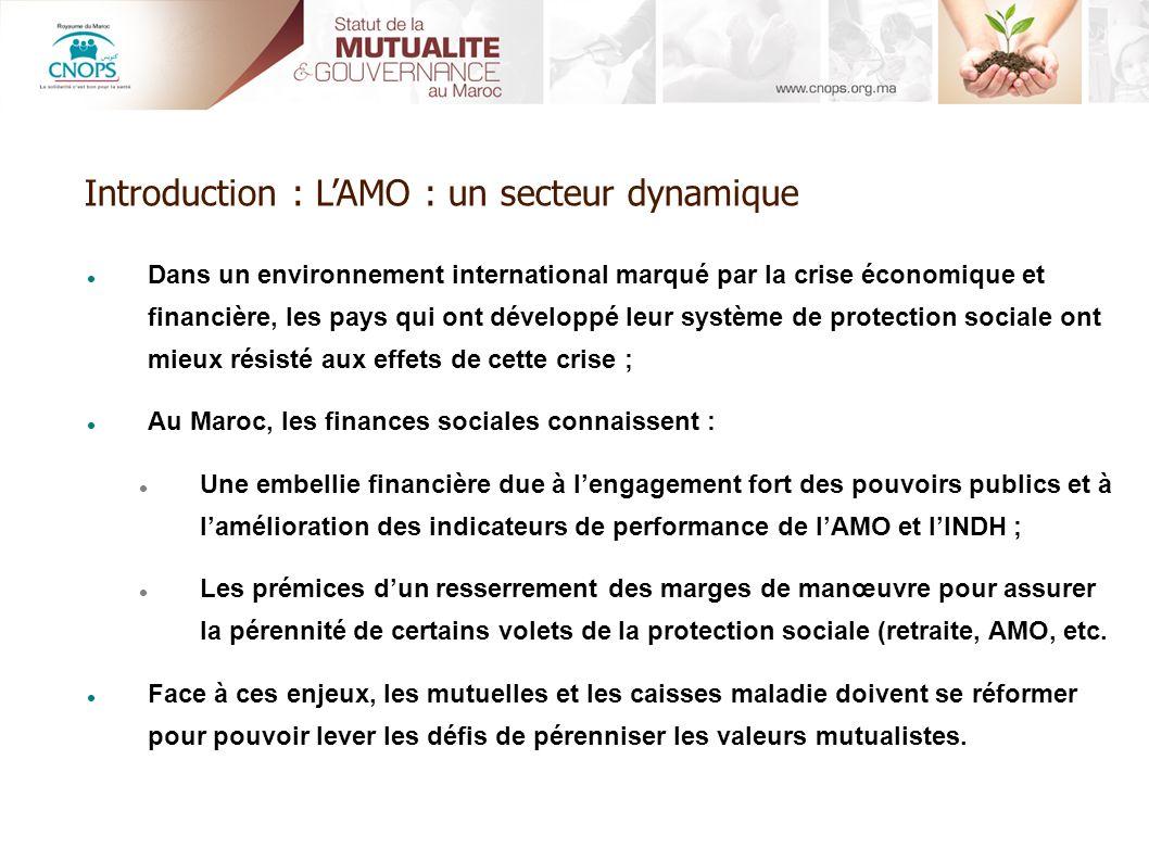 Introduction : L'AMO : un secteur dynamique
