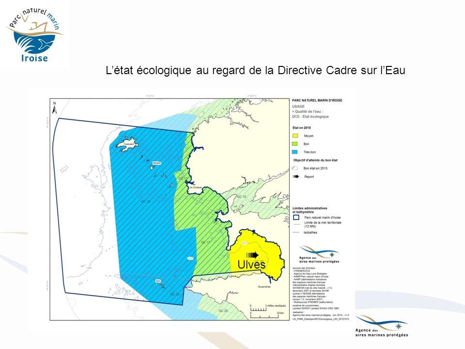 L'état écologique au regard de la Directive Cadre sur l'Eau