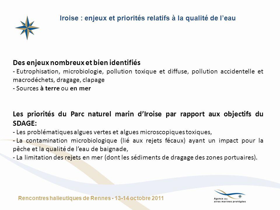 Iroise : enjeux et priorités relatifs à la qualité de l'eau