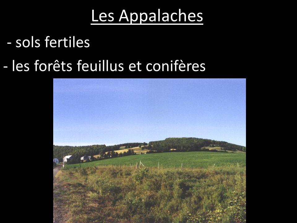 - sols fertiles - les forêts feuillus et conifères