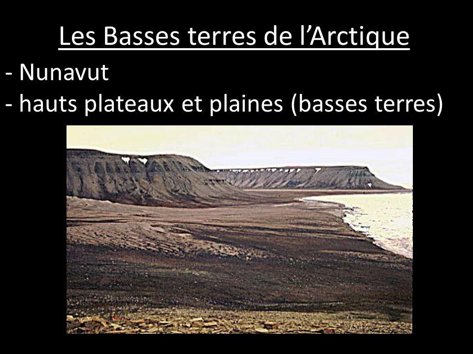 Les Basses terres de l'Arctique