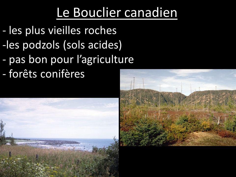 Le Bouclier canadien les plus vieilles roches