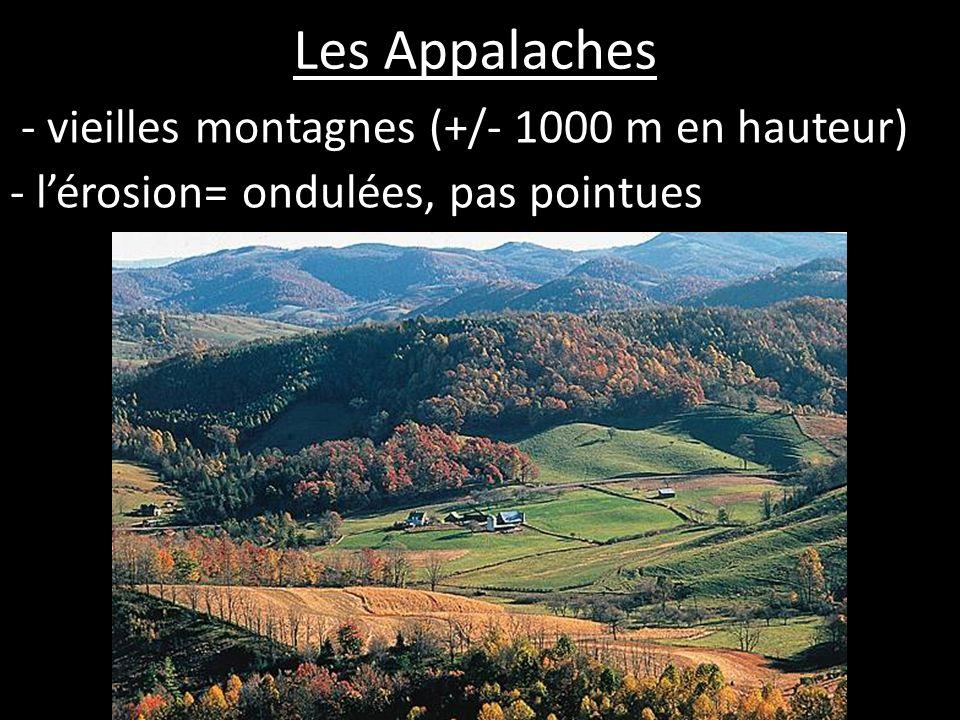 Les Appalaches - vieilles montagnes (+/- 1000 m en hauteur)