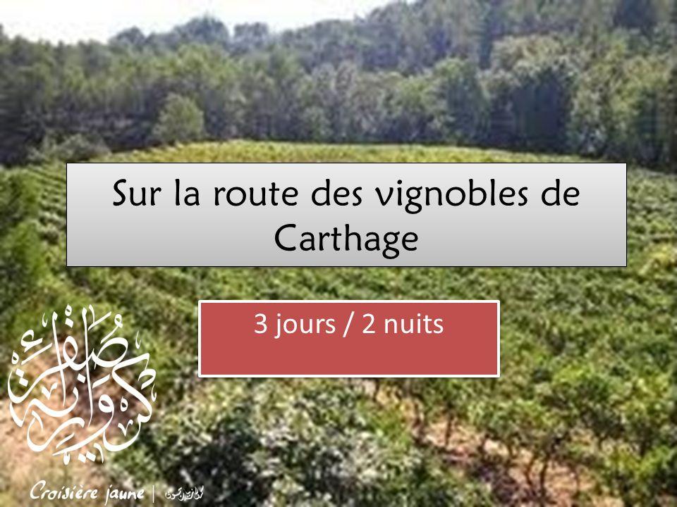 Sur la route des vignobles de Carthage