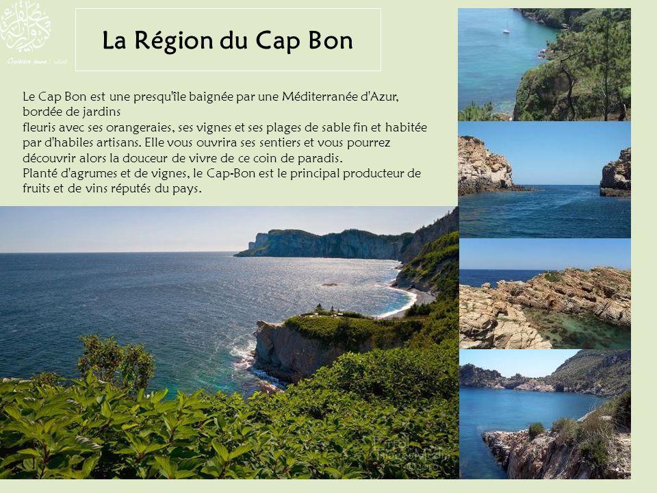La Région du Cap Bon Le Cap Bon est une presqu île baignée par une Méditerranée d Azur, bordée de jardins.