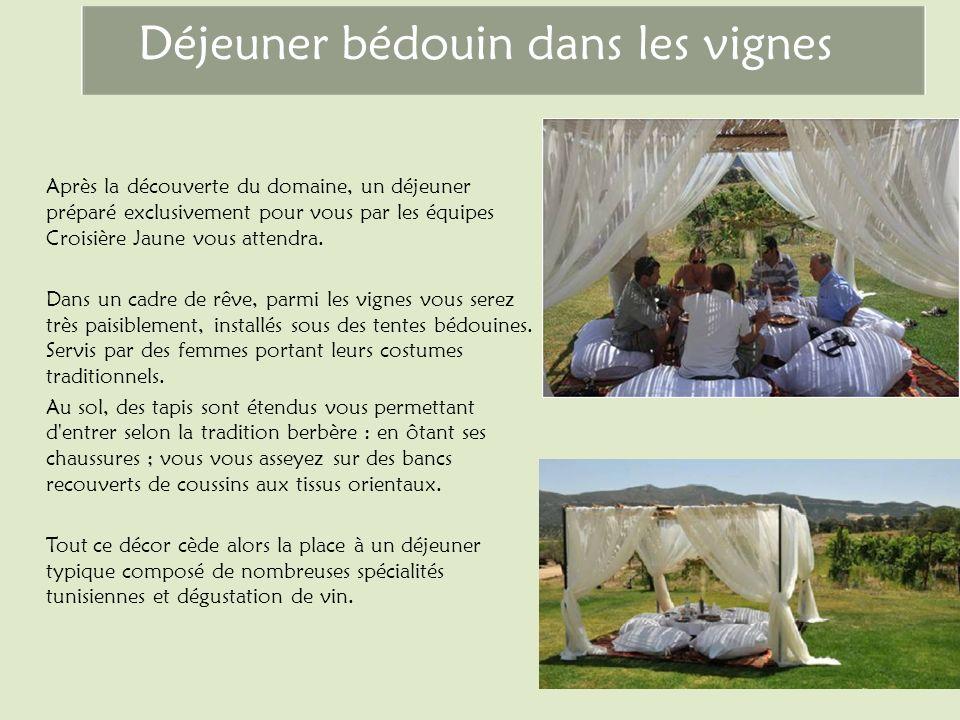 Déjeuner bédouin dans les vignes