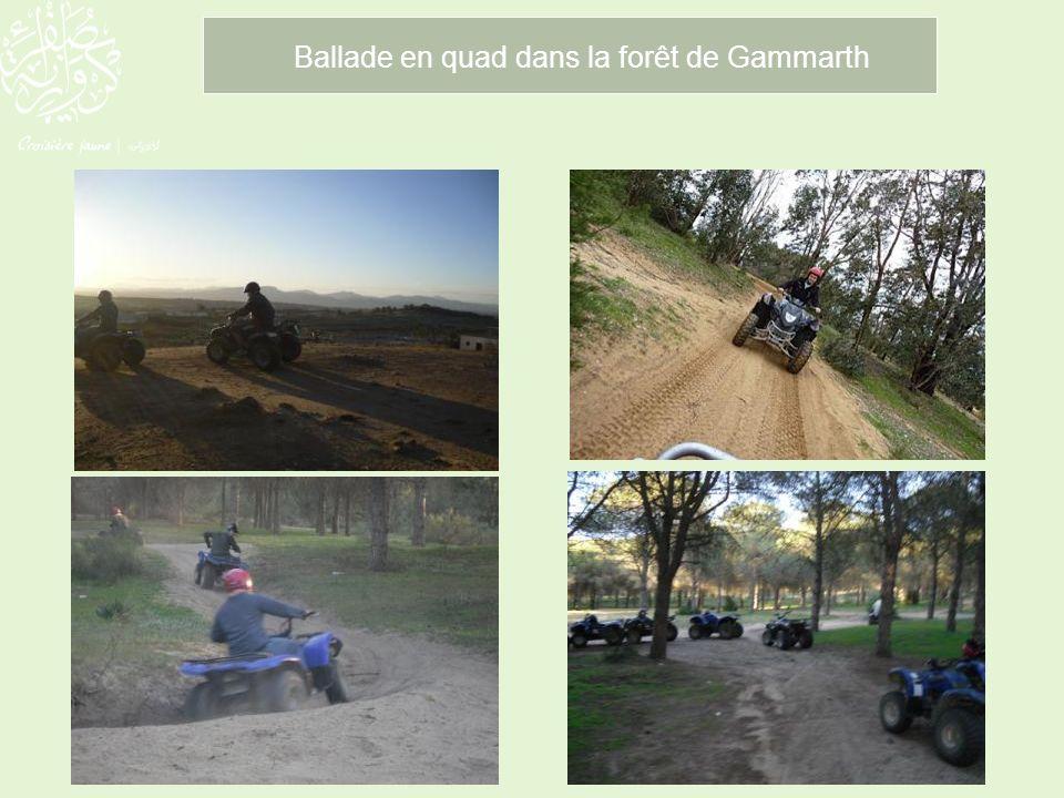 Ballade en quad dans la forêt de Gammarth