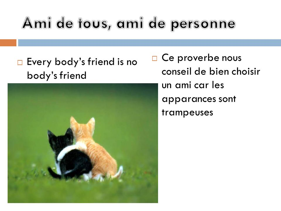 Ami de tous, ami de personne