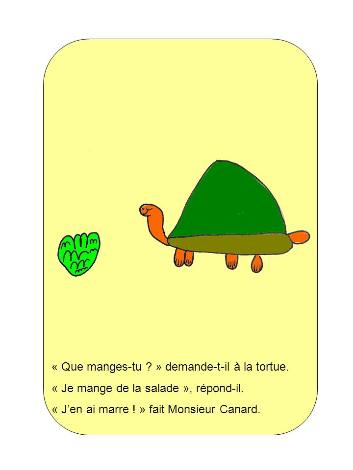 « Que manges-tu » demande-t-il à la tortue.