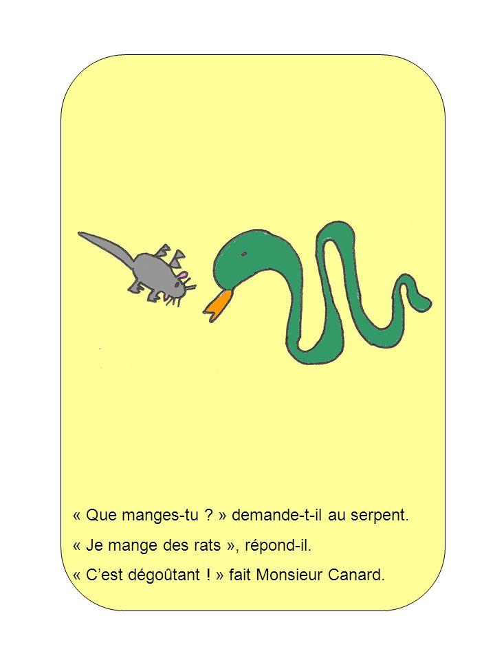 « Que manges-tu » demande-t-il au serpent.