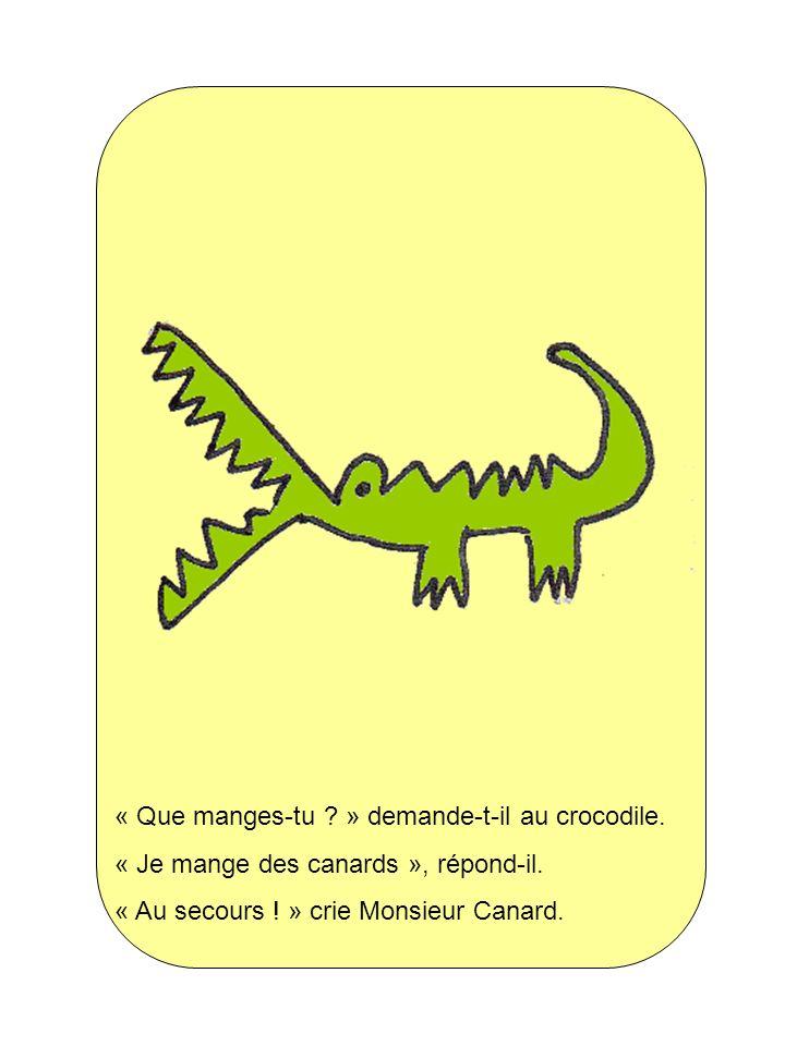 « Que manges-tu » demande-t-il au crocodile.