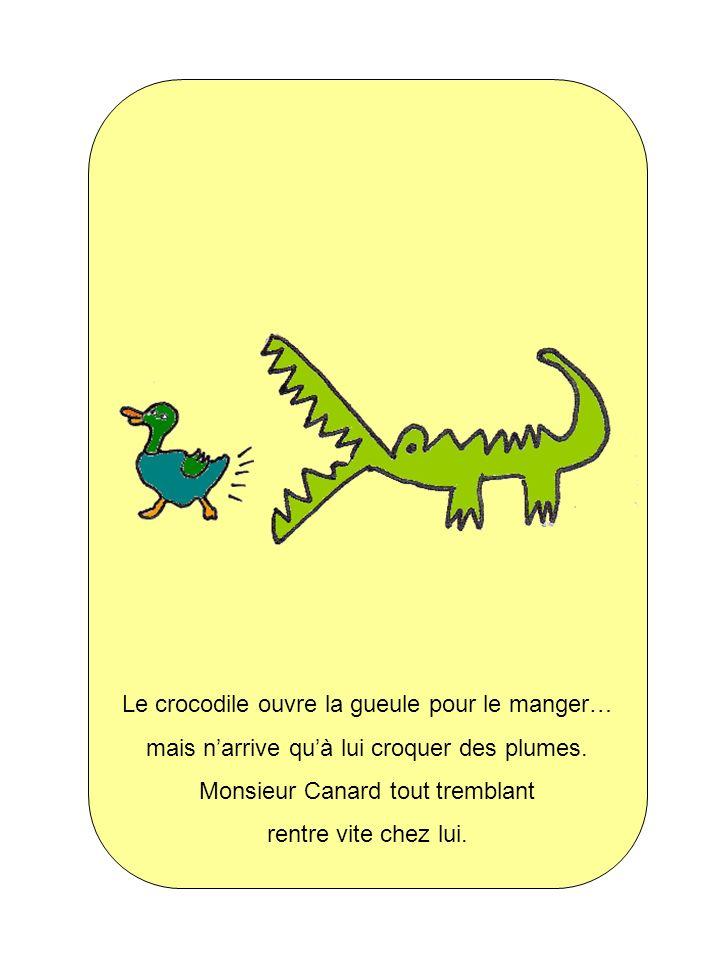 Le crocodile ouvre la gueule pour le manger…