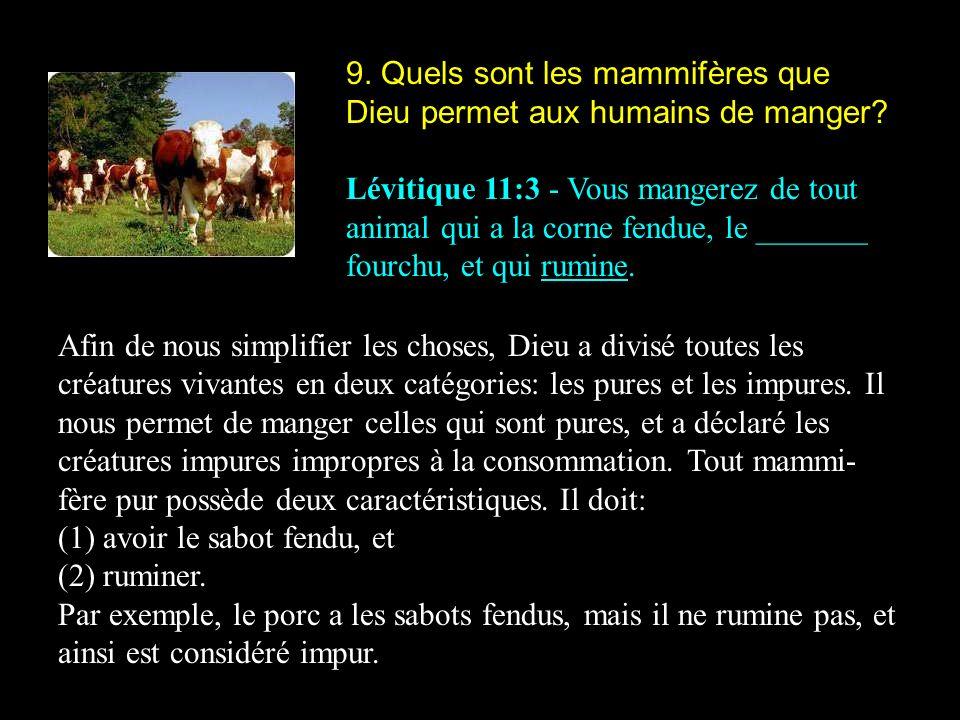 9. Quels sont les mammifères que Dieu permet aux humains de manger