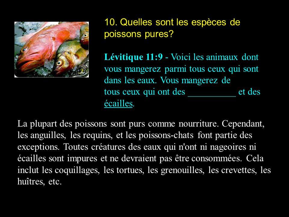 10. Quelles sont les espèces de poissons pures