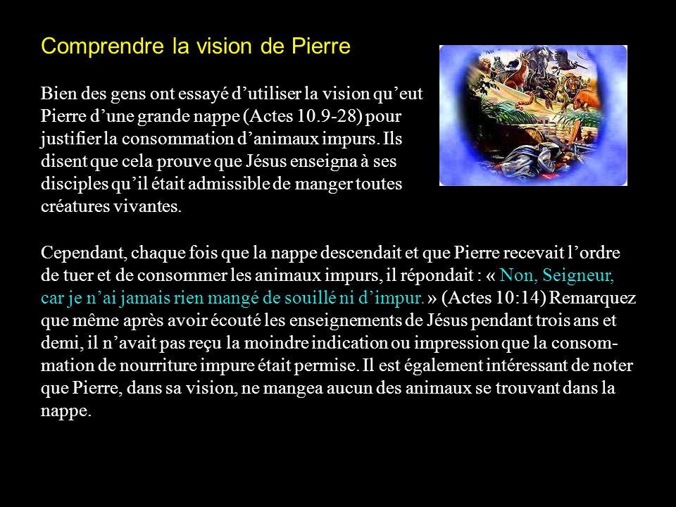 Comprendre la vision de Pierre